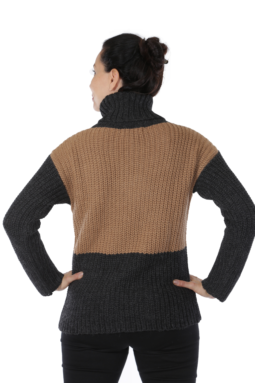 Lydia Color Block Turtleneck Back on Model