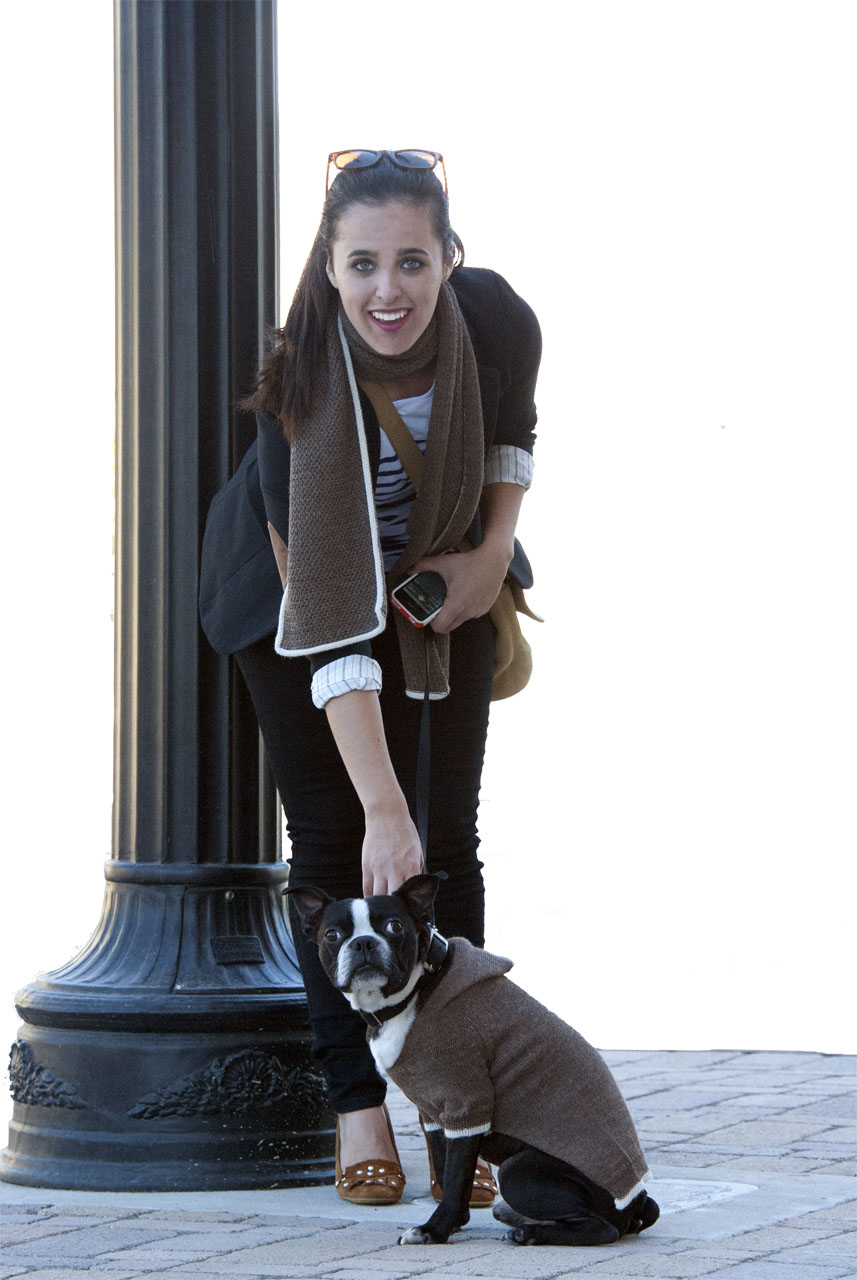 Hooded Jersey Raglan Sleeve Dog Sweater On Models Main