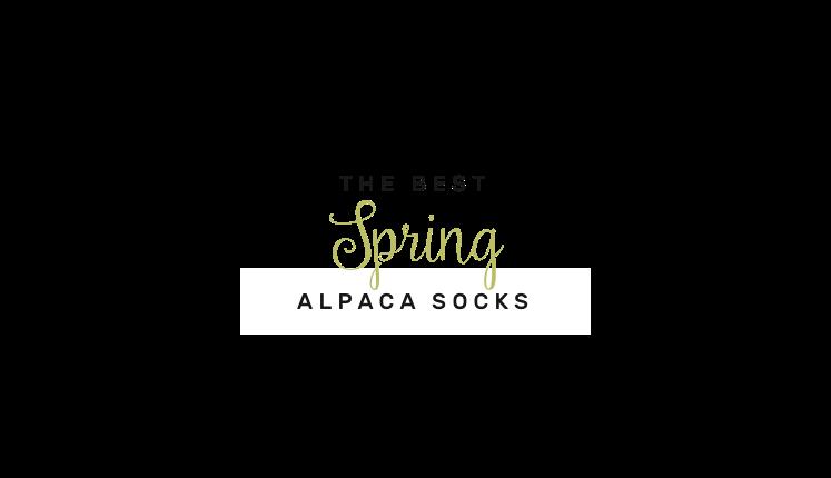 alpaca-socks-at4.png