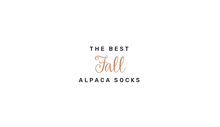 alpaca-socks-t43.png