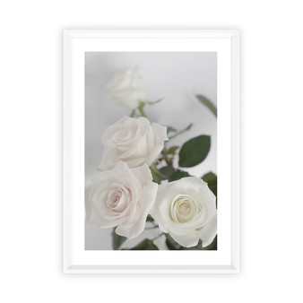Enchanted Rose Photographic Wall Art Print