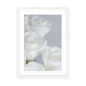 Eternal Love Rose Photographic Wall Art Print