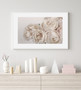 La Belle Rose Photographic Wall Art Print in Peach Monochrome with optional white timber frame
