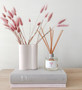 Marmoset Found - Ribbed Infinity Vase Nude (S), shown with Peony Luxury Fragrance Diffuser