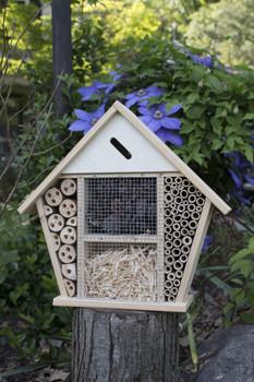 Insect Lodge [LLH]