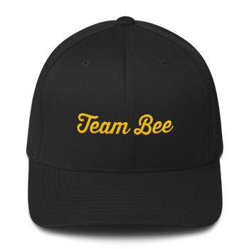 Team Bee Hat (black)
