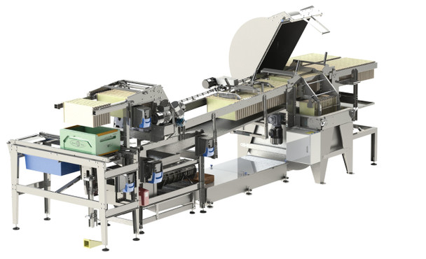 Bee World Inline Extraction System (60 Frame Extraction Line)