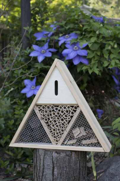 Triangle Insect House [TIH]