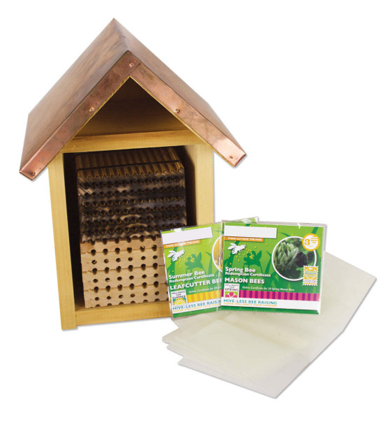Native Bee Kit - Large [M9212]