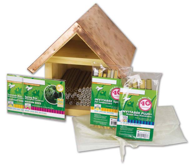 Native Bee Kit - Small [M9213]