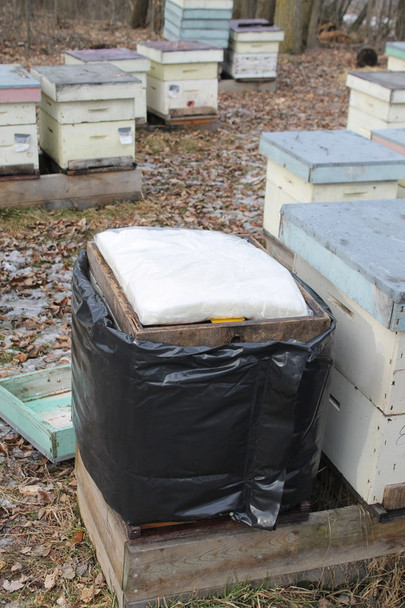 Winter Hive Wrap w/ Inner Pad Combo [644]