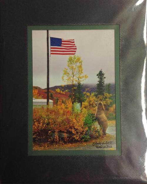Matted Photo - Patriot Bear 8x10