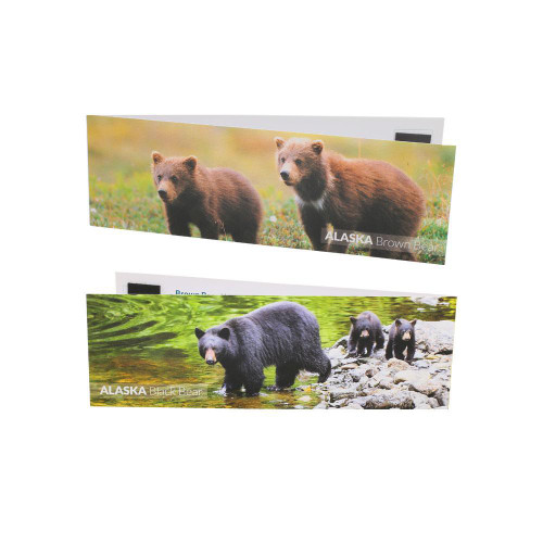 Bookmark Magnet Grizzly / Black Bear