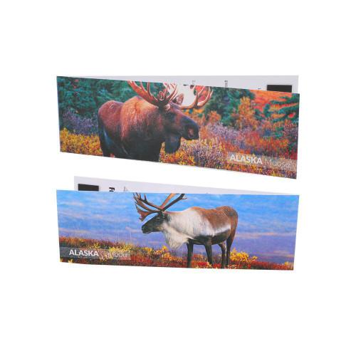 Bookmark Magnet Caribou / Moose