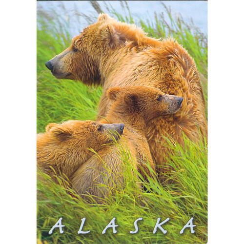 Magnet - Alaska Wild Images - Bear and Cubs