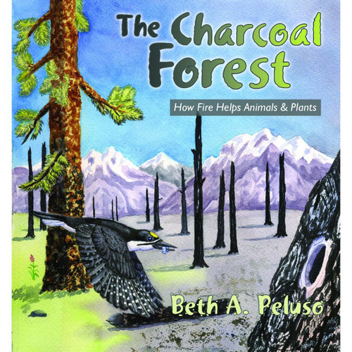 Charcoal Forest : How Fire Helps Animals & Plants