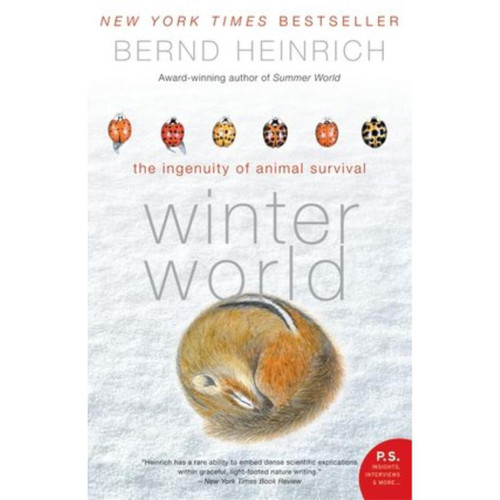 Winter World: The Ingenuity of Animal Survival by Bernd Heinrich