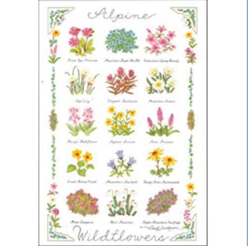Poster - Alpine Wildflowers by Carol Dickerson