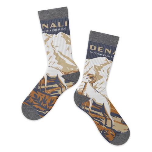 Socks - Denali Retro