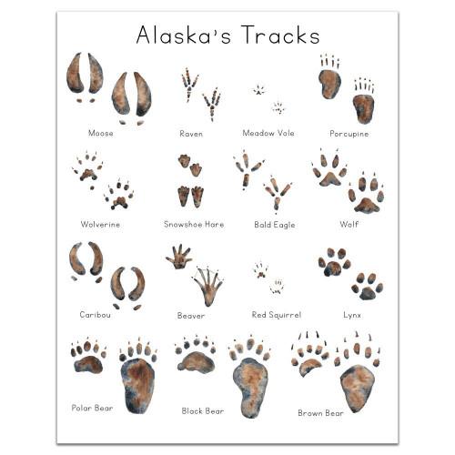 Alaska Animal Tracks Art Print