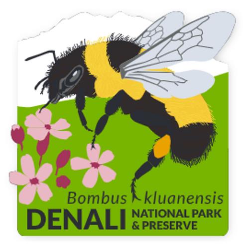 Patch - Denali's Bee & Flowers