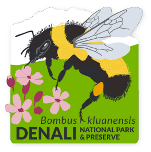 Patch - Denali's Bee & Flowers