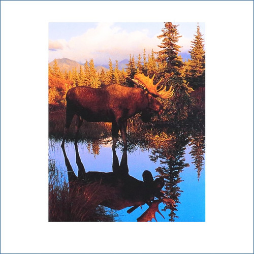 Moose Reflection Magnet