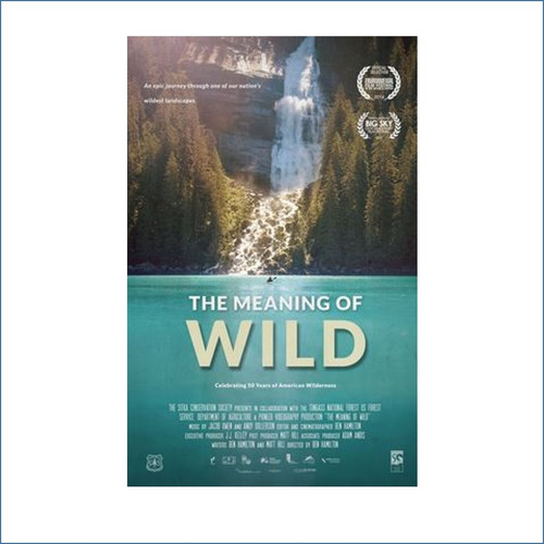 DVD - The Meaning of Wild