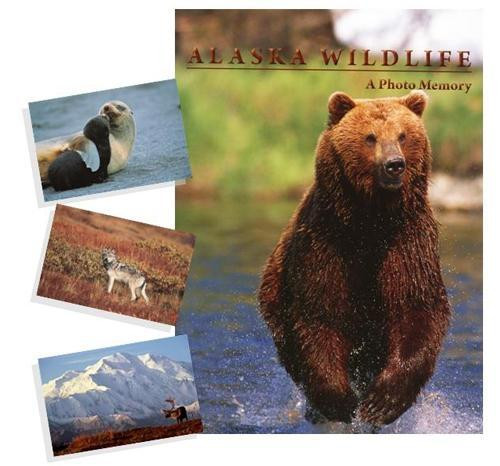 Alaska Wildlife: A Photo Memory Book
