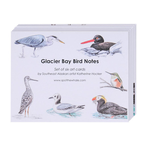 Notecard 6-Pack - Glacier Bay Birds