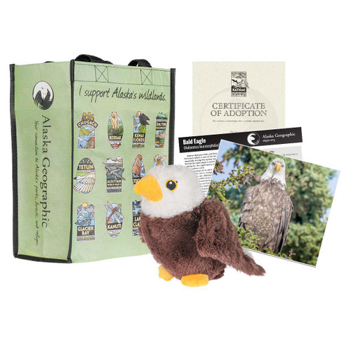 Adoption Kit - Bald Eagle - Katmai