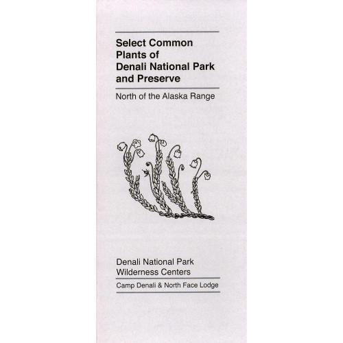 Select Common Plants of Denali NP&P North of the Alaska Range