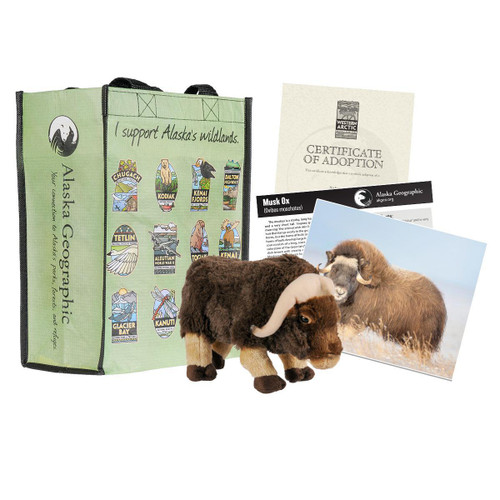 Adoption Kit - Muskox - Kobuk Valley