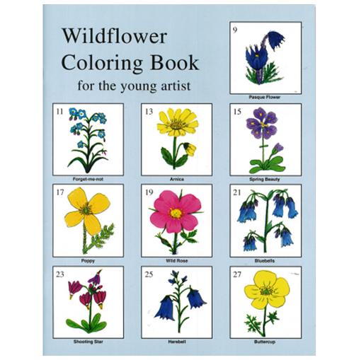 Wildflower Coloring Book by Verna Pratt