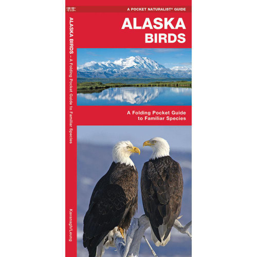 Alaska Birds: A Folding Pocket Guide to Familiar Species
