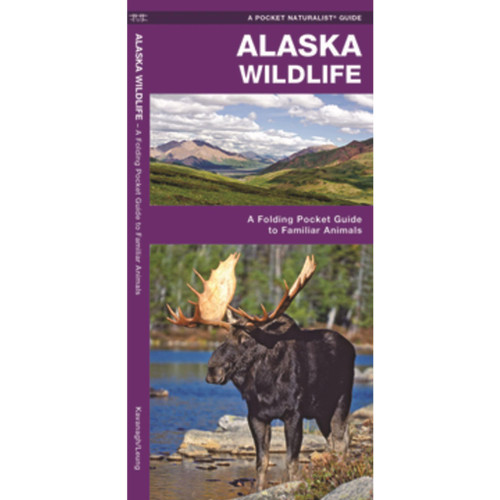 Alaska Wildlife : A Folding Pocket Guide to Familiar Animals