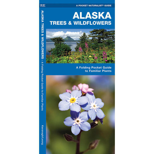 Alaska Trees & Wildflowers: A Folding Pocket Guide to Familiar Species