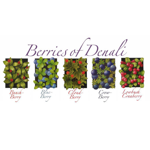 Nature of Denali Berries Note Cards Marshall Arts