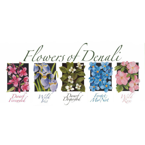Nature of Denali Flower Note Cards Marshall Arts