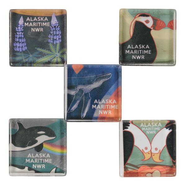 Magnets - Glass Tile Alaska Maritime NWR Magnets