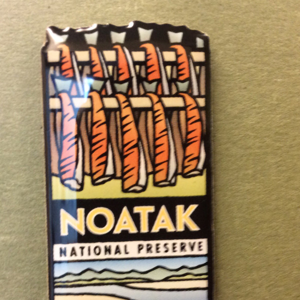 Pin - Noatak National Preserve