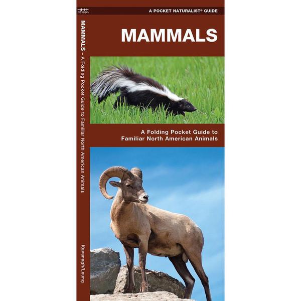 Mammals: A Folding Pocket Guide to Familiar North American Animals
