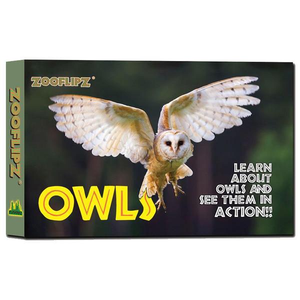 Flip Book - Owl