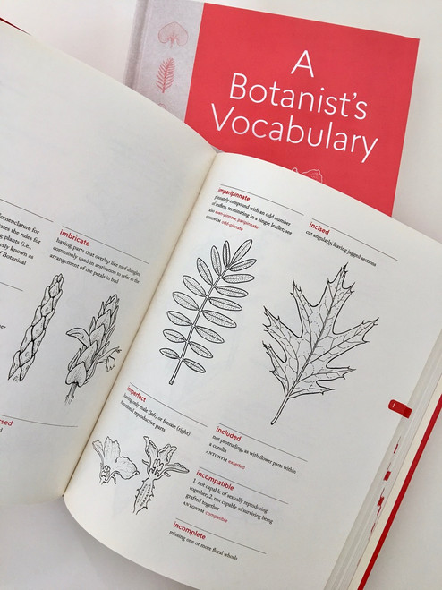 A Botanist's Vocabulary: 1300 Terms Explained and Illustrated (Science for Gardeners)