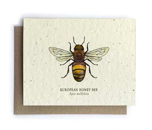 European Honey Bee Plantable Seed Greeting Card