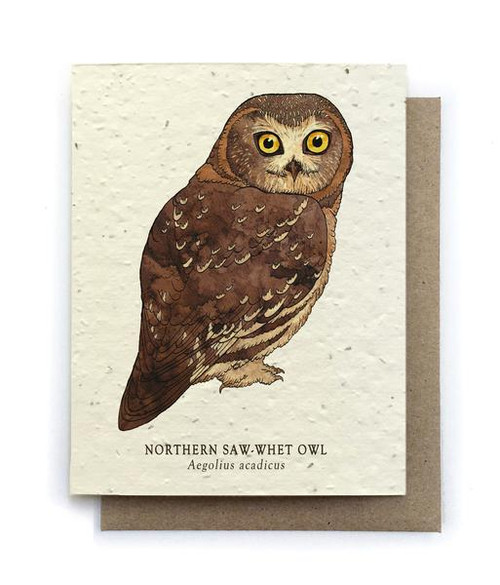 Owl Plantable Seed Greeting Card
