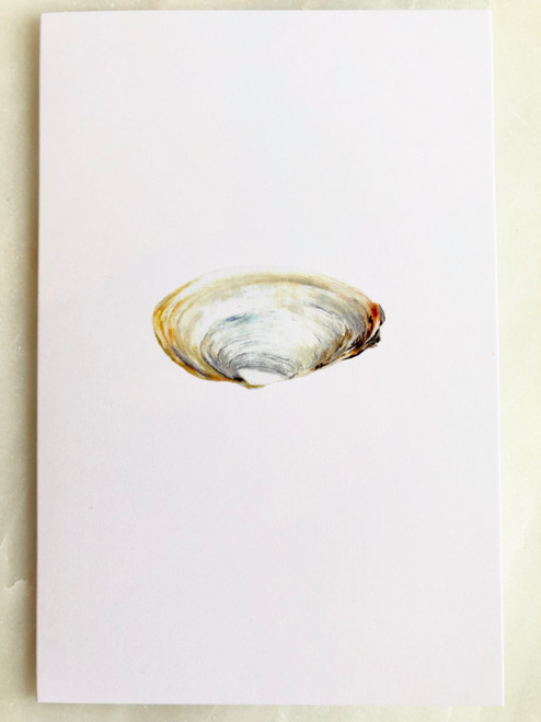 Clam Card by Evan Stevens Boothbay, Maine Artist