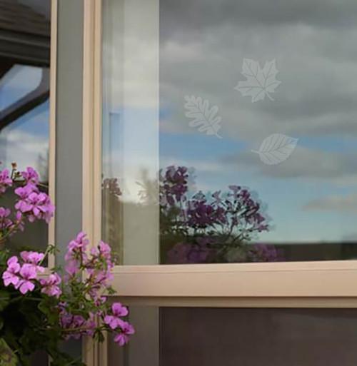 Window Alert Bird Strike Window Decals in FIVE LEAF MEDLEY