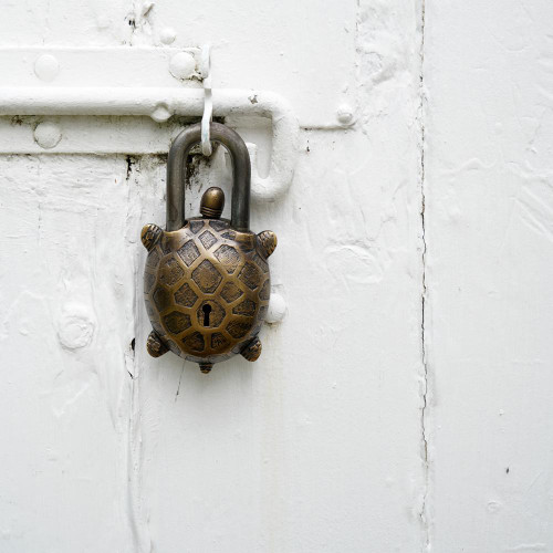 Turtle Lock in Aged Brass and Steel
