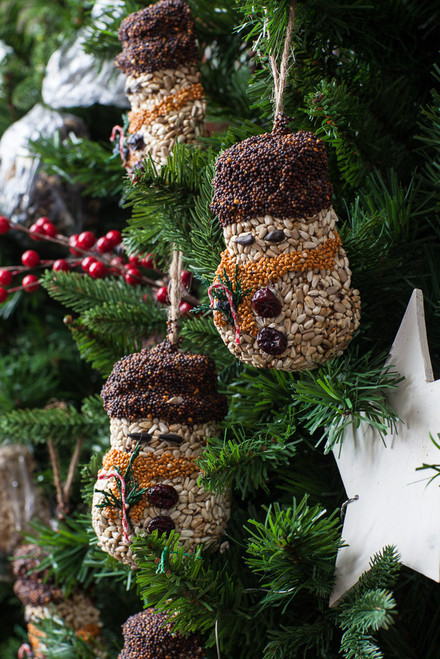 Bird Seed Ornaments (Assorted in Snowman, Tree, Stocking)